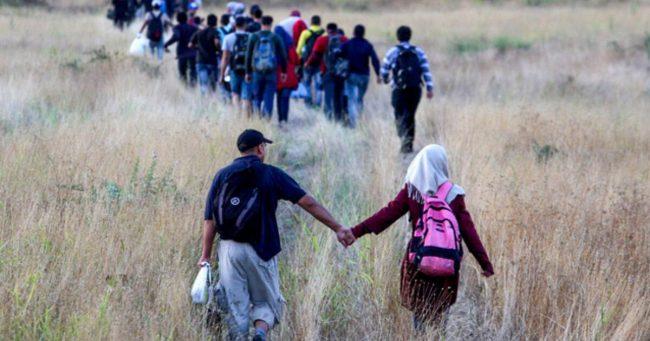 refugees_crisis_score